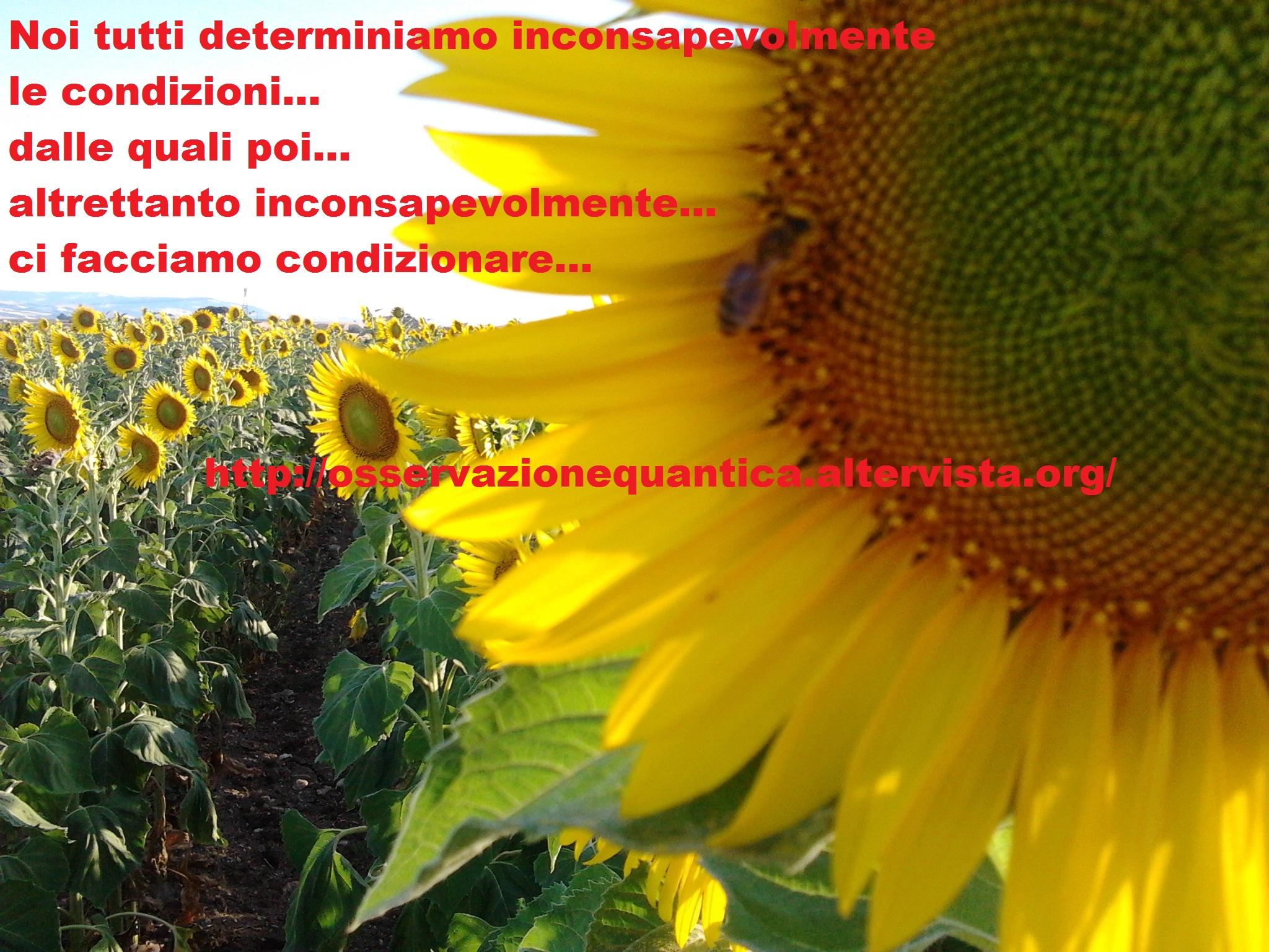 2012-06-25 19.08.43 - Copia